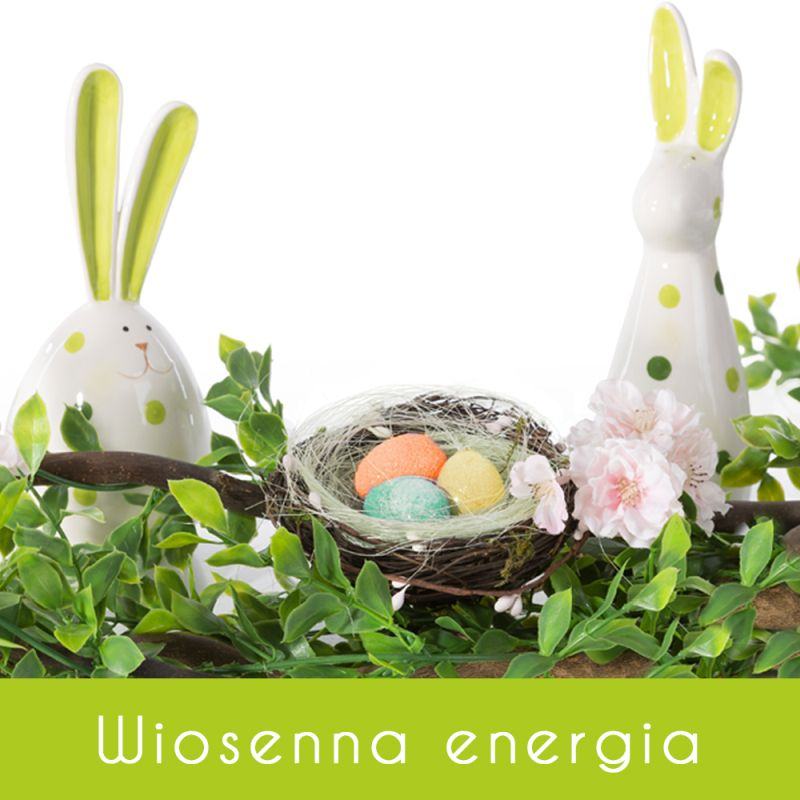 Wiosenna energia